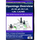 openings_overview