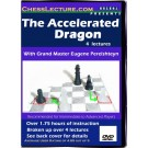 accelorated_dragon_front