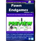 pawn_endgames